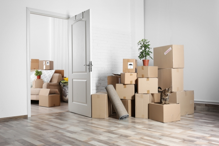 serviis_packing_and_moving_rule